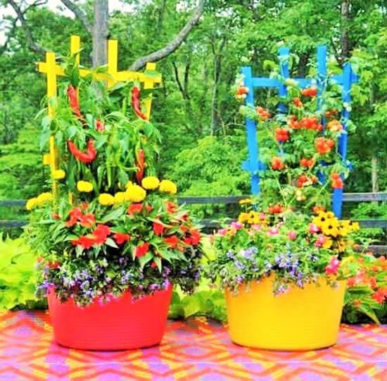 DIY Garden (3)