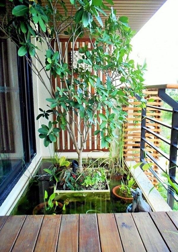 creating-a-mini-pond