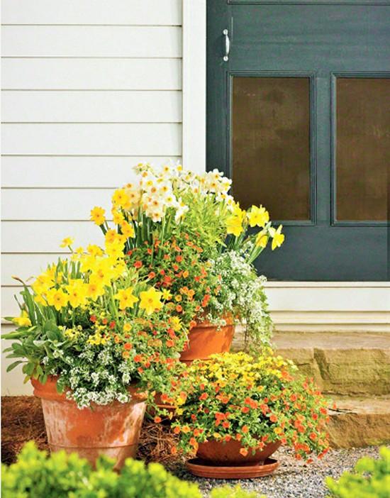 Bring on Spring- Gardening Ideas (2)