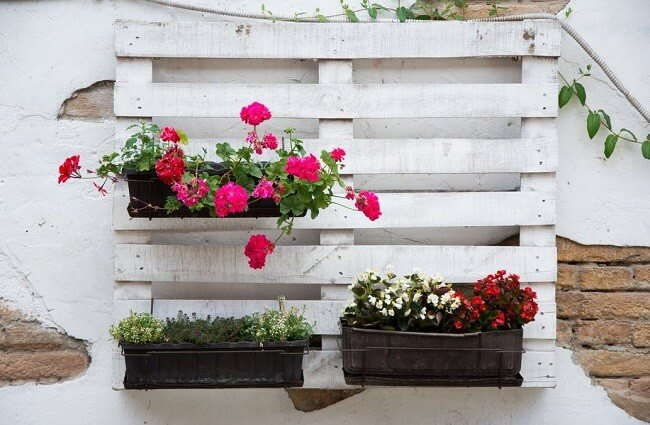 DIY-indoor-garden-ideas-3