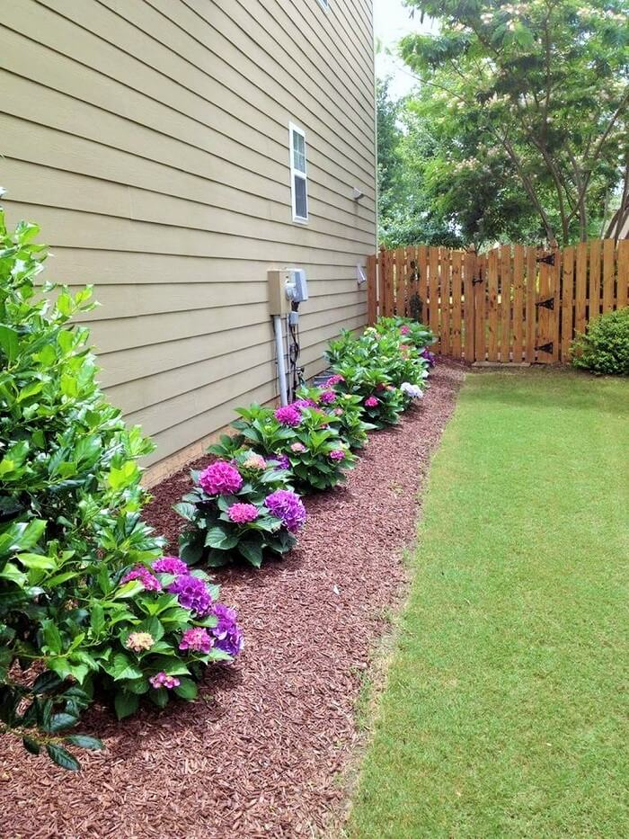 Beautiful Home Gardening Ideas For The Front And The Backyard
