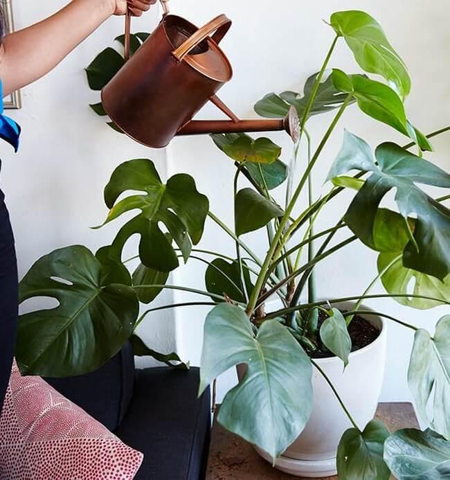 DIY-indoor-garden-ideas-14