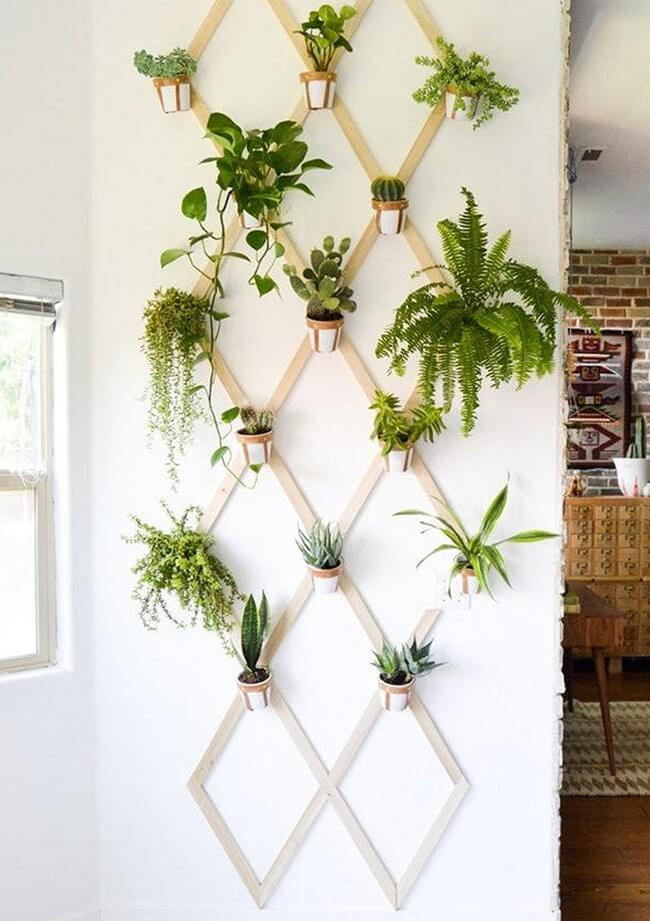 Ideas For Decorating The Indoors With Plants 1001 Motive
