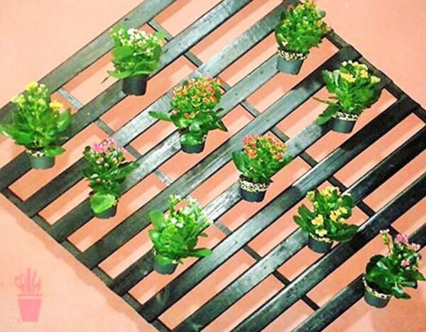 Garden ideas-6