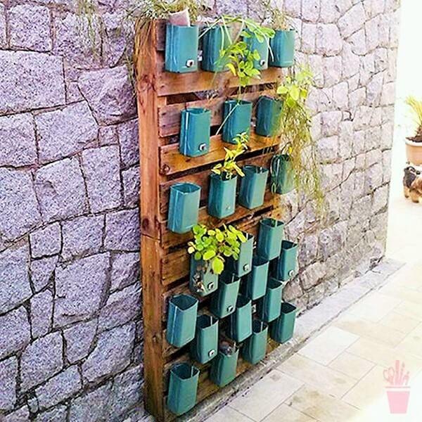 Garden ideas-7