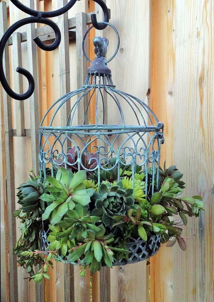 Gardening-outdoor--planter-ideas-101