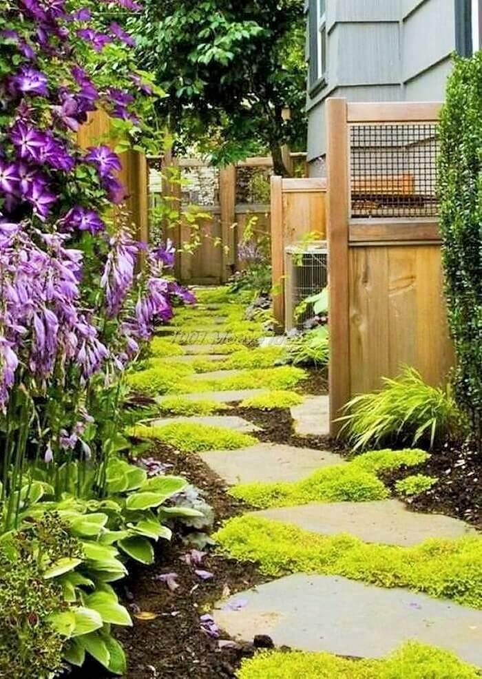 Amazing-garden-idea
