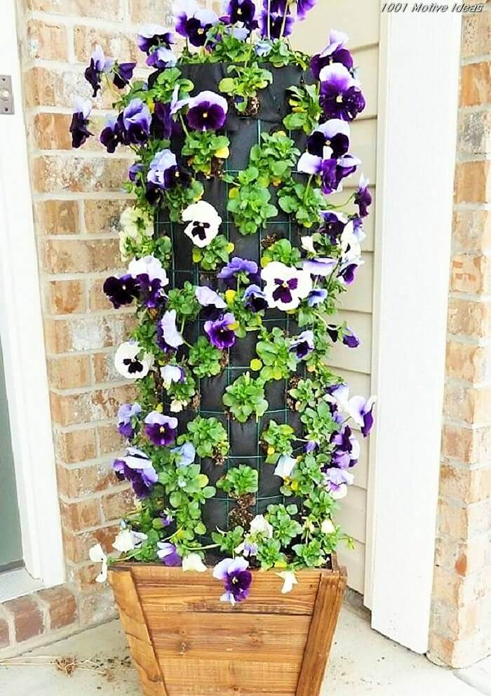 Easy-and-cheap-diy-garden-Homemade-Projects-112 (2)