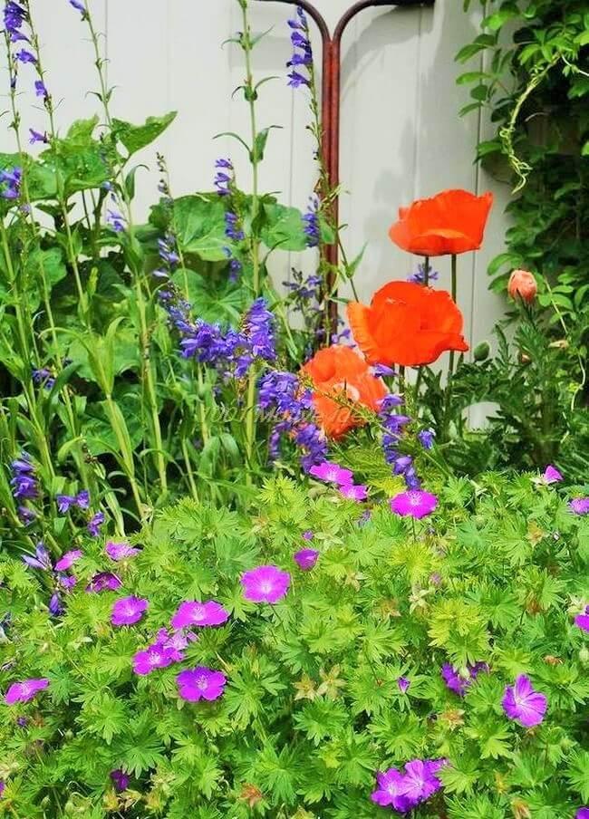DIY-garden-goodies-Ideas (3)