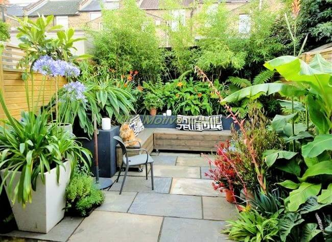 DIY-landscaping-variety-(2)