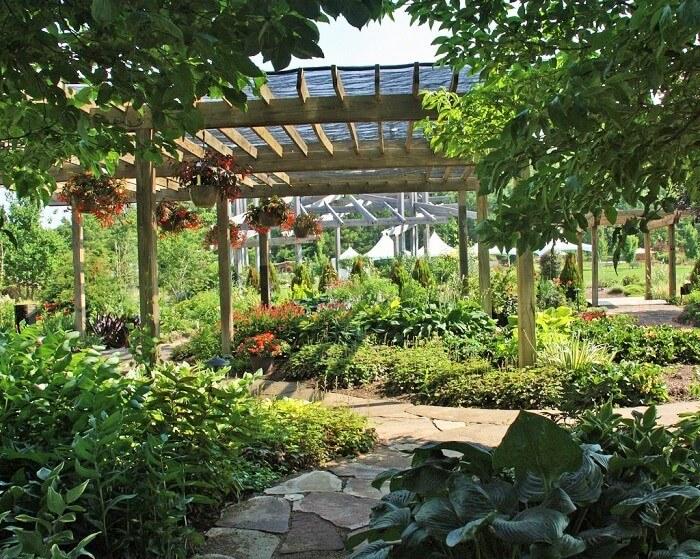 Diy-shade-garden