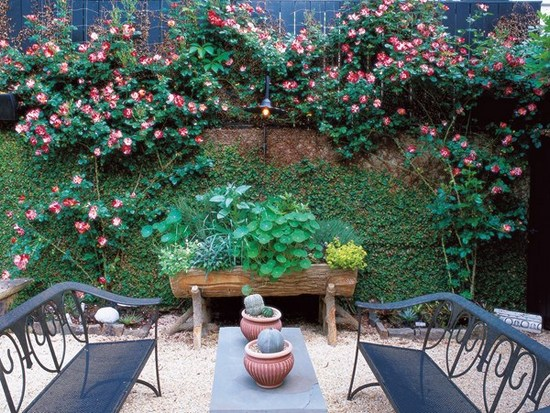 Garden-flowers-Ideas