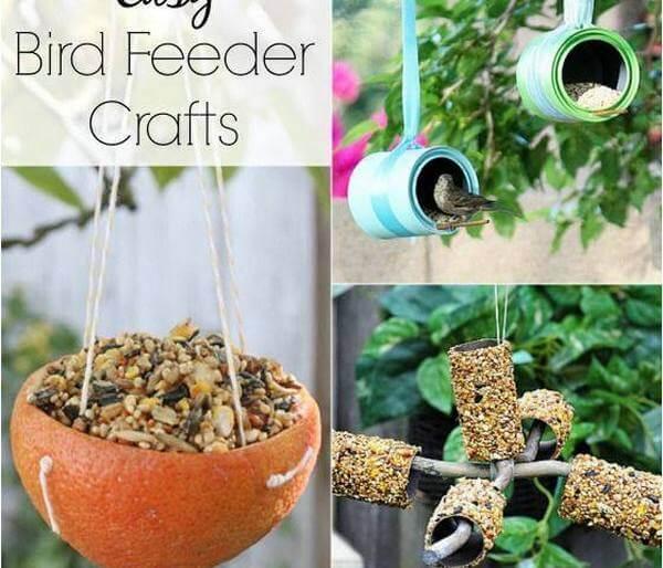 HOMEMADE BIRD FEEDER CRAFTS