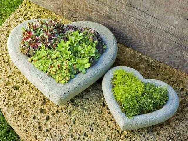 tone-Heart-Planters-Ideas