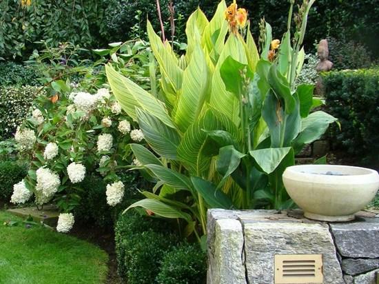 landscapes-Garden