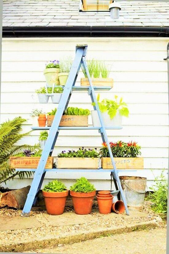 Beautiful-Frame-Plant-Stand (3)