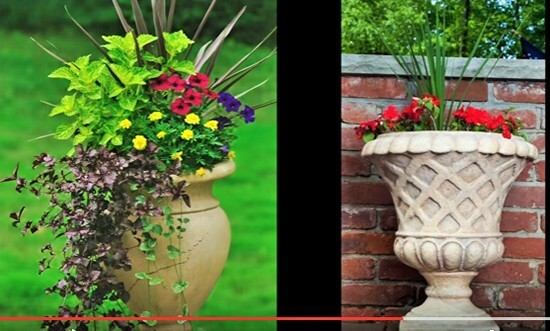Container Gardening Ideas 2 (2)