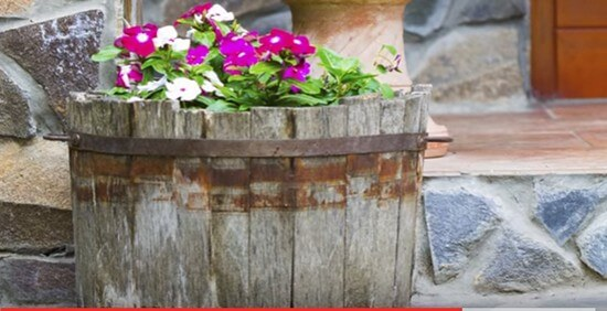 Container Gardening Ideas-4