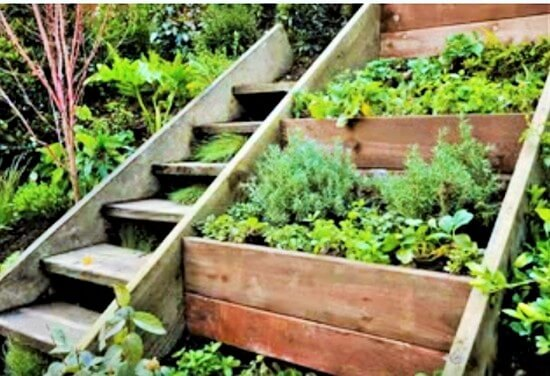 Creative gardening ideas 3