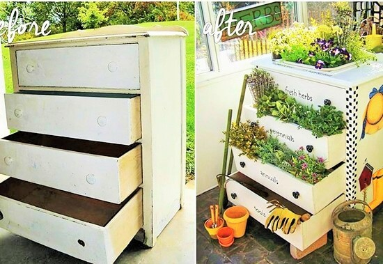 DIY Garden at Home (3)