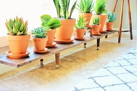 Diy-Low-Plant-Stand (3)