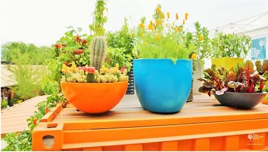 Garden design planning your garden RHS Gardening-1 (3)