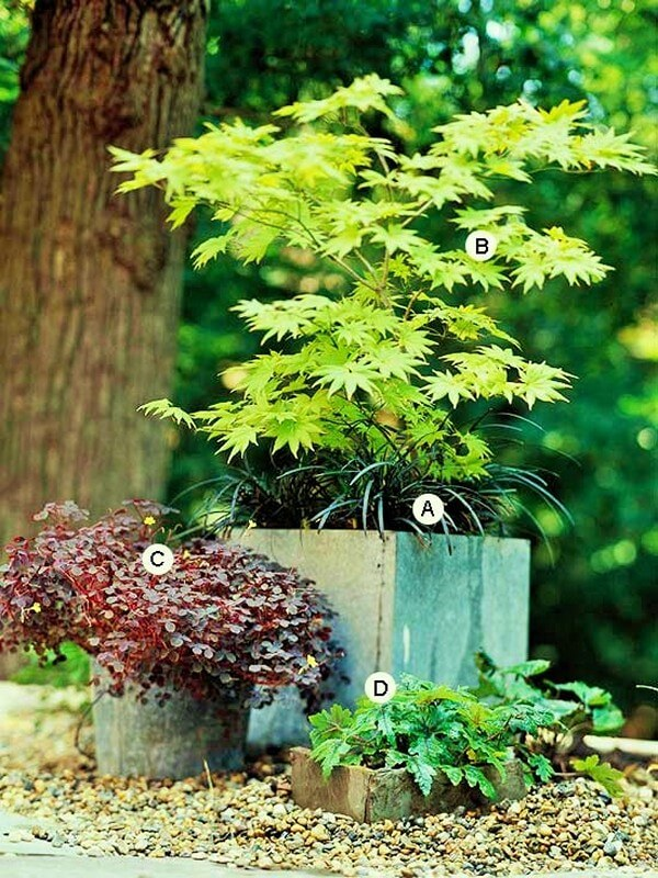 Home Decor Garden Ideas-2 (2)