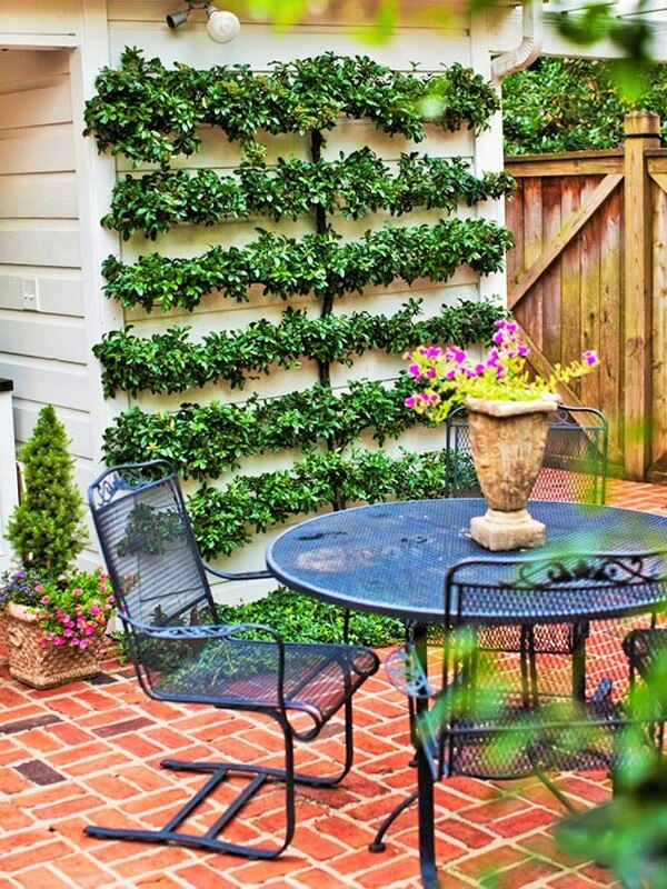 Home Decor Garden Ideas-7 (2)