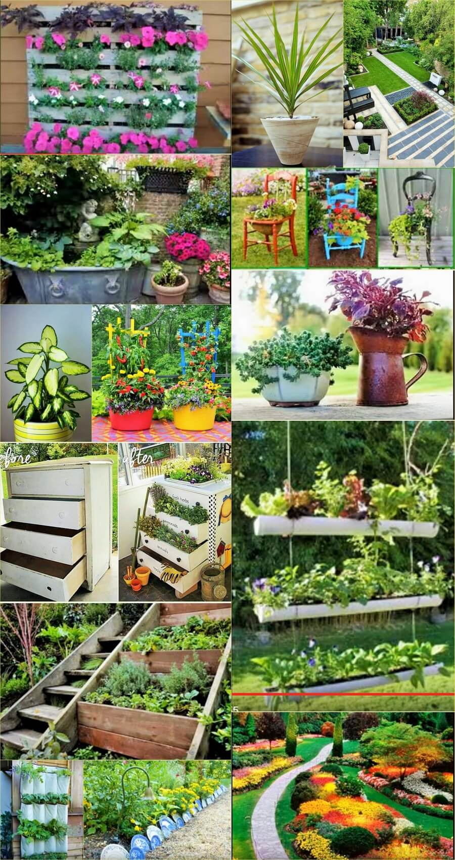 Modren Garden Ideas
