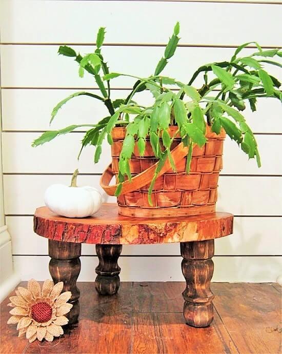 Wood-Slice-Plant-Stand (3)