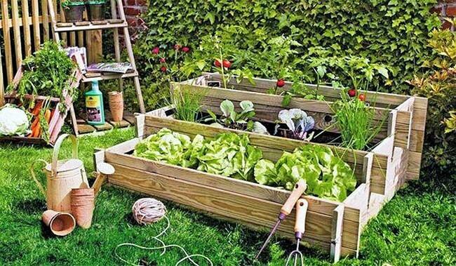 beautiful-hanging-garden-home-7 (2)