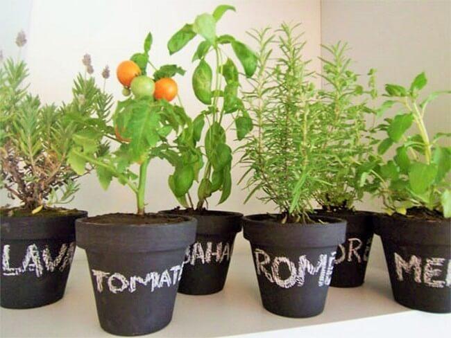 beautiful-hanging-garden-home-8 (2)