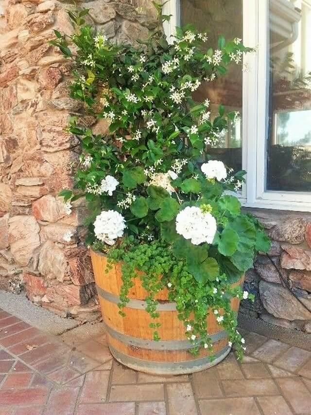 DIY-Garden-Ideas-7 (2)