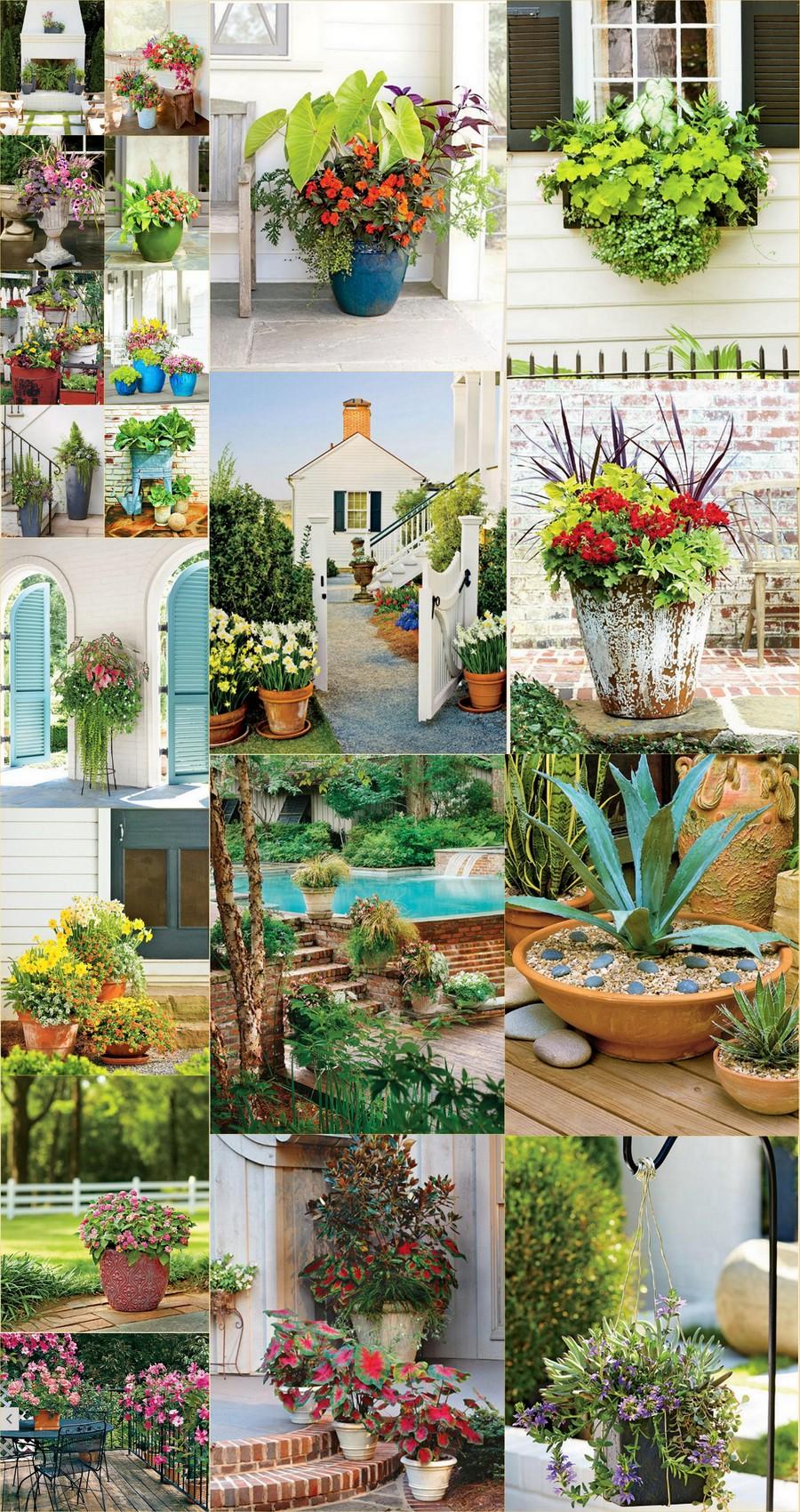 Gardening Ideas-2