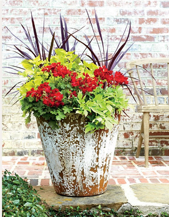 Geraniums Built- Gardening Ideas-6