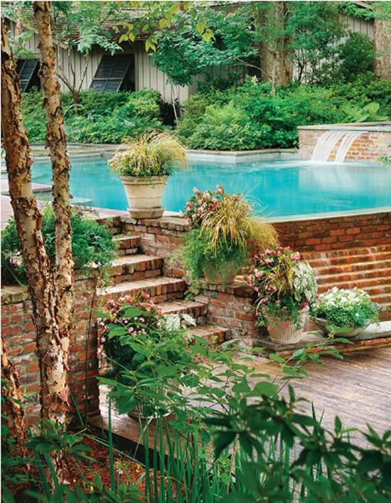 Grasses amp Caladiums Gardening Ideas