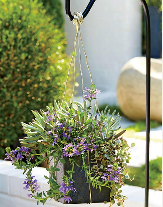Modern Hanging Gardening Ideas