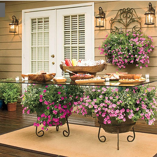 Trailing Petunias Gardening Ideas