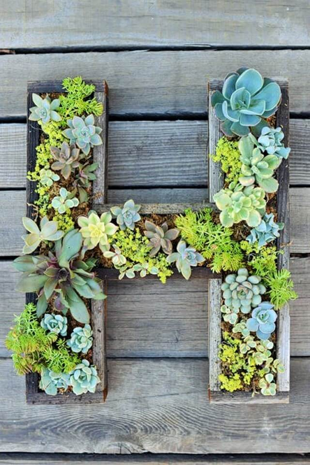 Wall-Mounted-Succulent-Letter-DIY-1