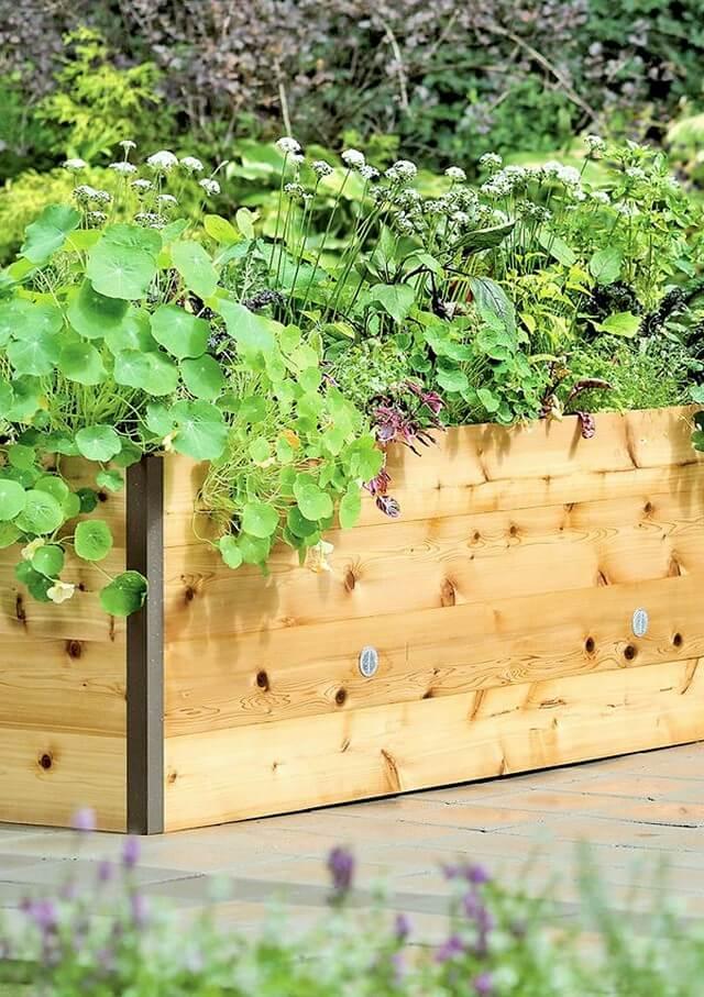 Wooden Garden (2)