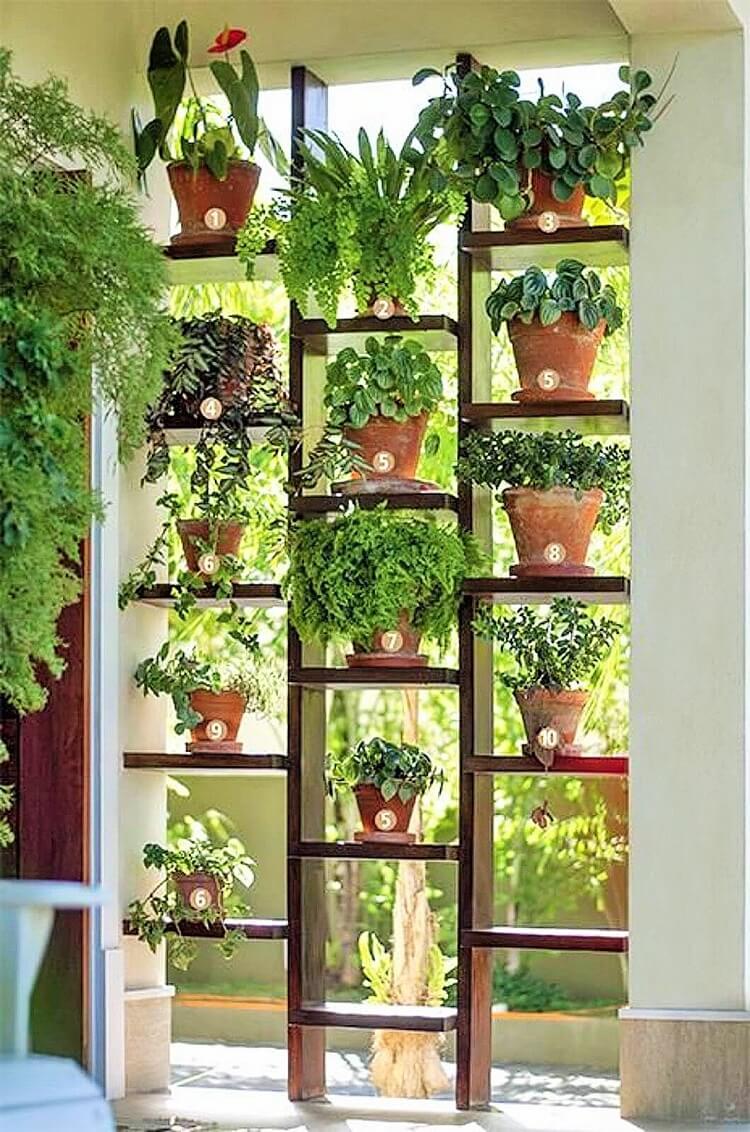 Garden-ideas-1
