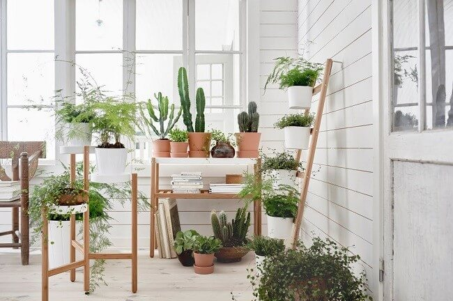 indoor-garden-ideas-1
