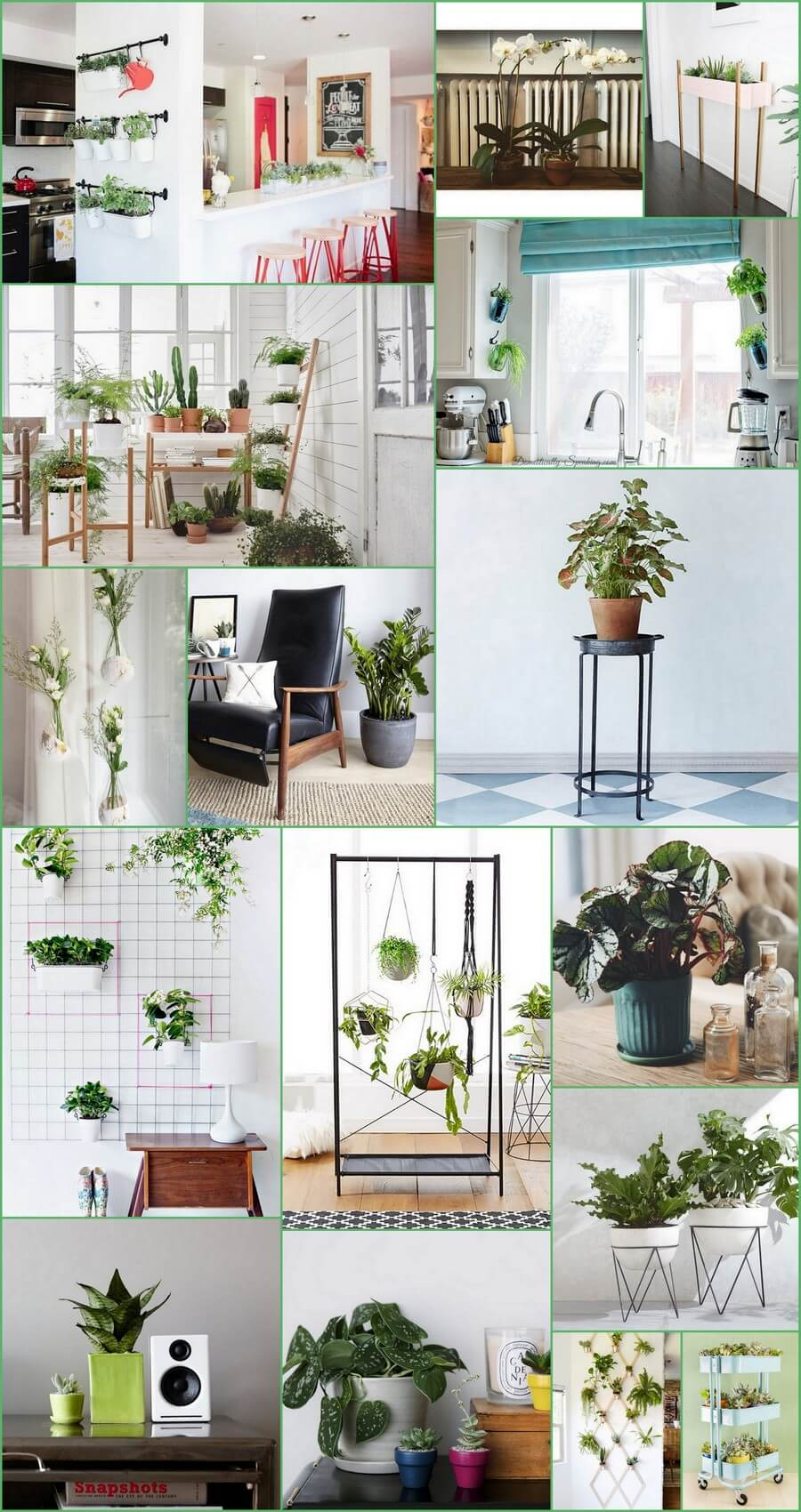 indoor-garden-ideas
