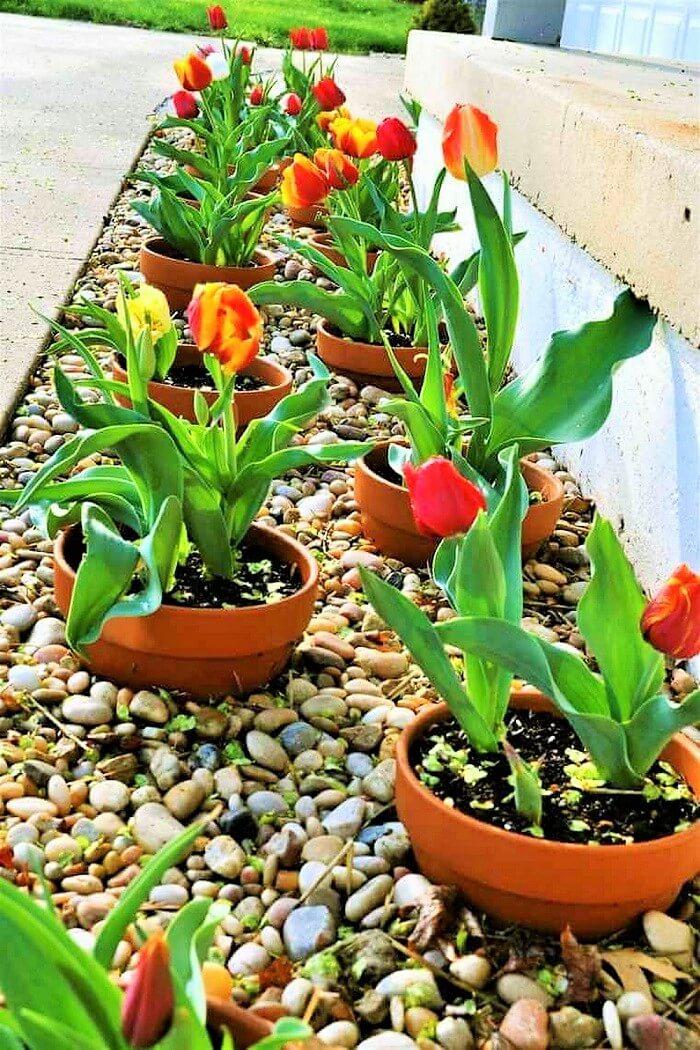 Beautiful-Front-Yard-Landscape-Garden-Ideas-2