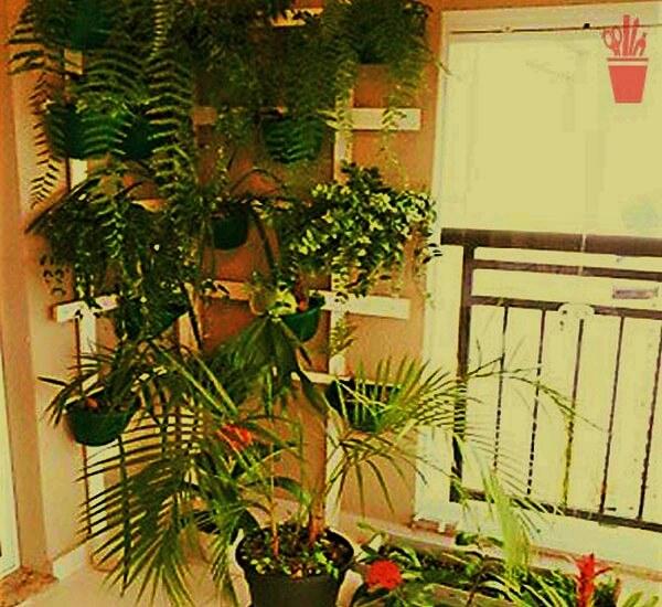 Garden ideas-4