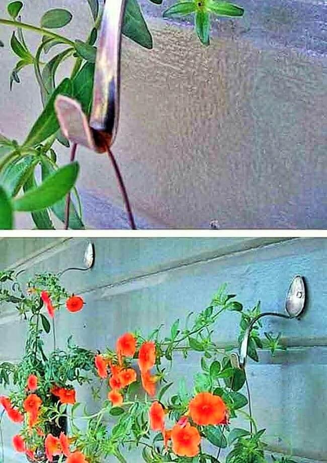 Garden Ideas-3