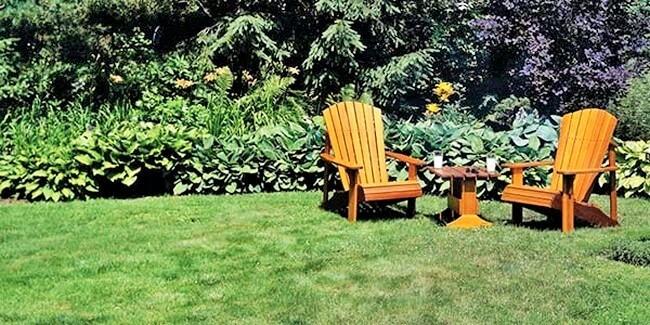 Beautiful Flower Garden Design-4