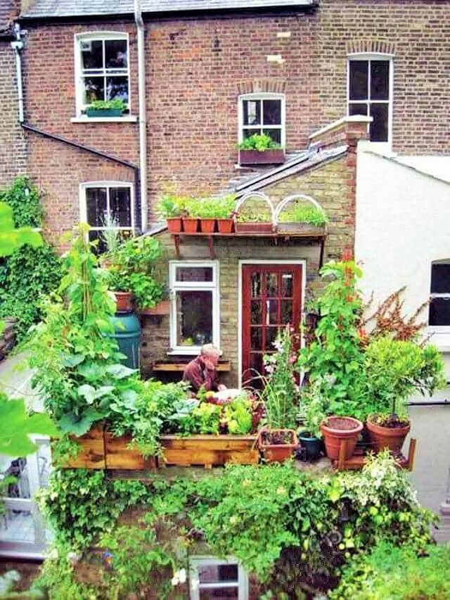 Gardens-You-Can-Have-On-Your-Balcony-14 (2)