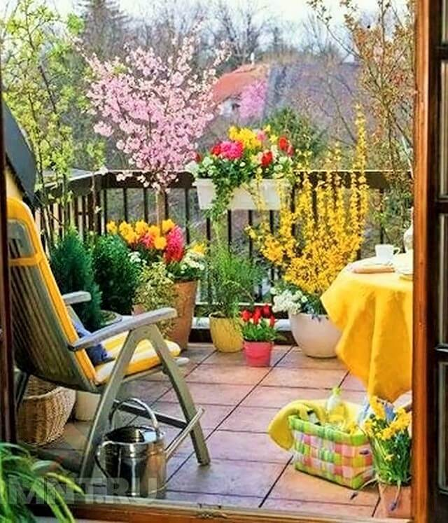 Gardens-You-Can-Have-On-Your-Balcony-4 (2)