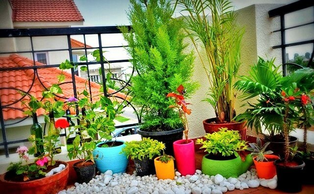 Gardens-You-Can-Have-On-Your-Balcony-6 (2)